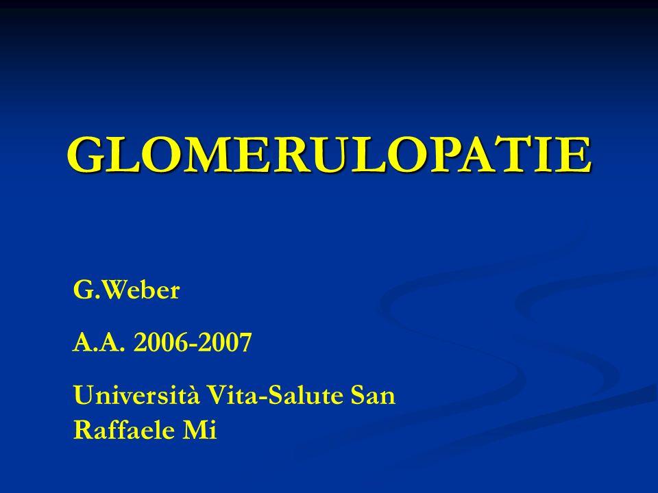 GLOMERULOPATIE G.Weber A.A. 2006-2007