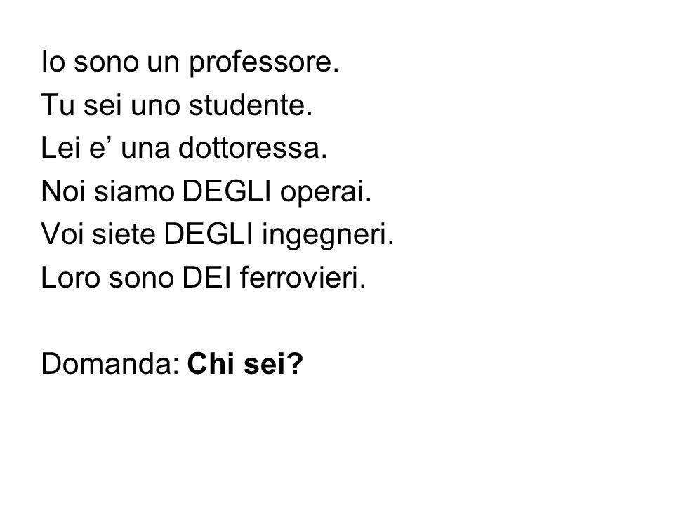 Io sono un professore. Tu sei uno studente. Lei e' una dottoressa. Noi siamo DEGLI operai. Voi siete DEGLI ingegneri.