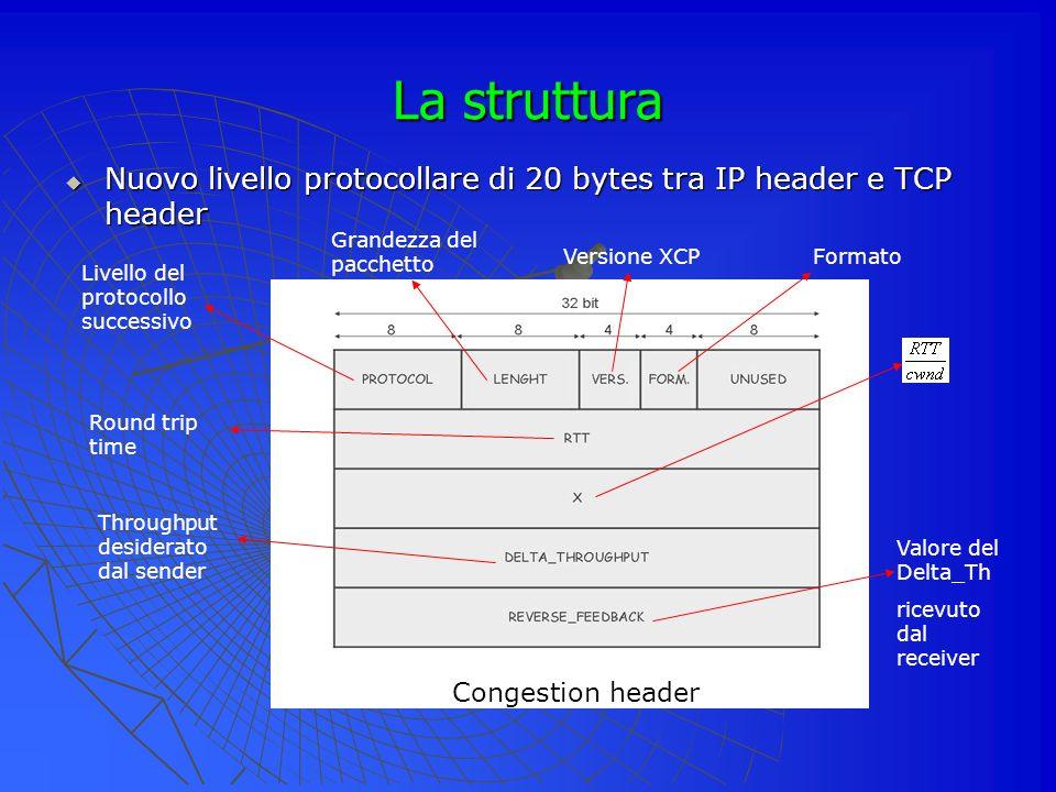 La struttura Nuovo livello protocollare di 20 bytes tra IP header e TCP header. Grandezza del pacchetto.