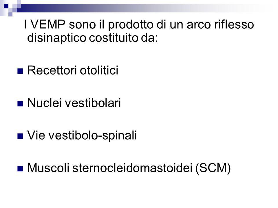 I VEMP sono il prodotto di un arco riflesso disinaptico costituito da: