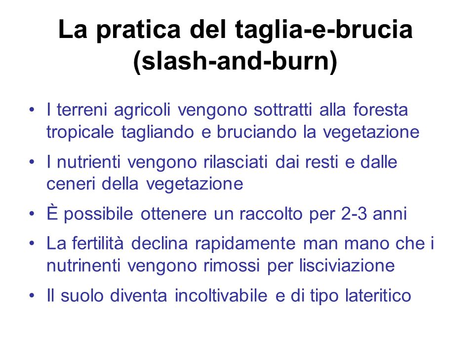 La pratica del taglia-e-brucia (slash-and-burn)
