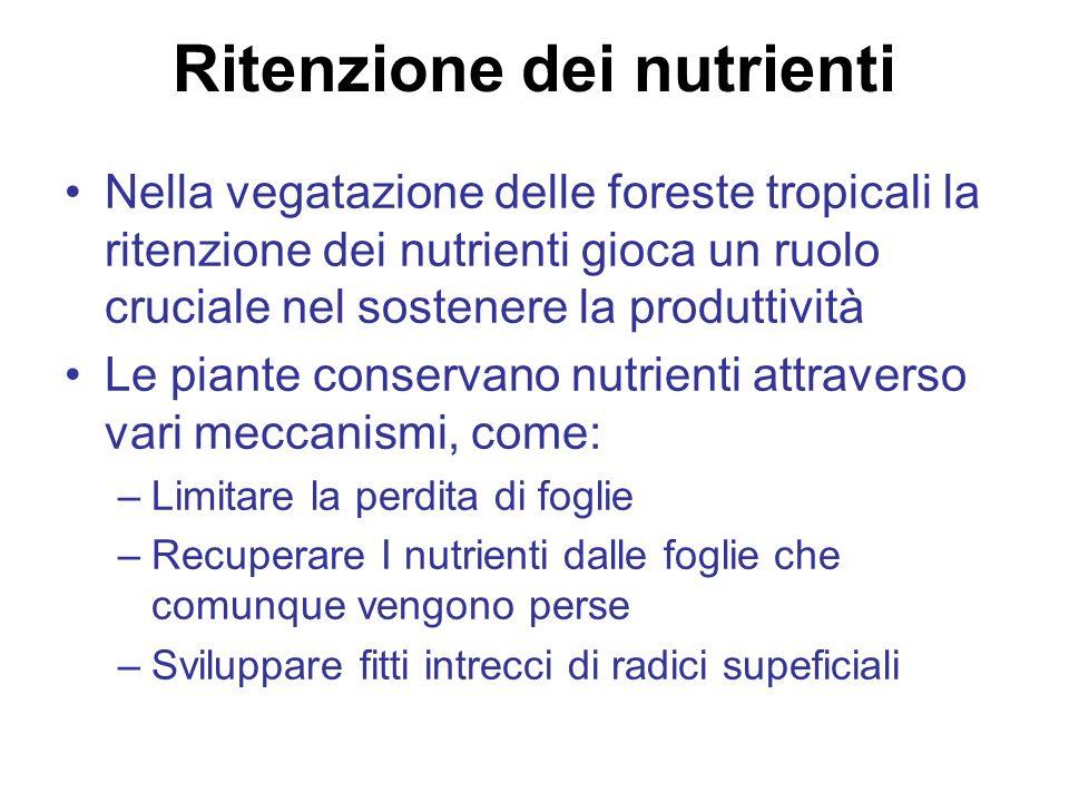 Ritenzione dei nutrienti