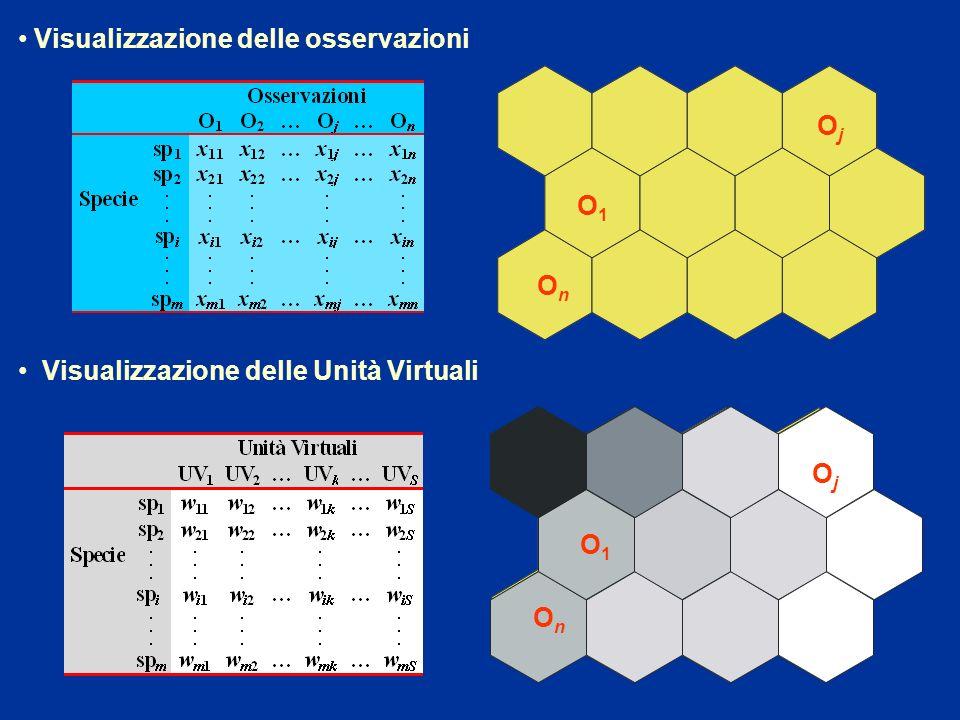 Visualizzazione delle osservazioni