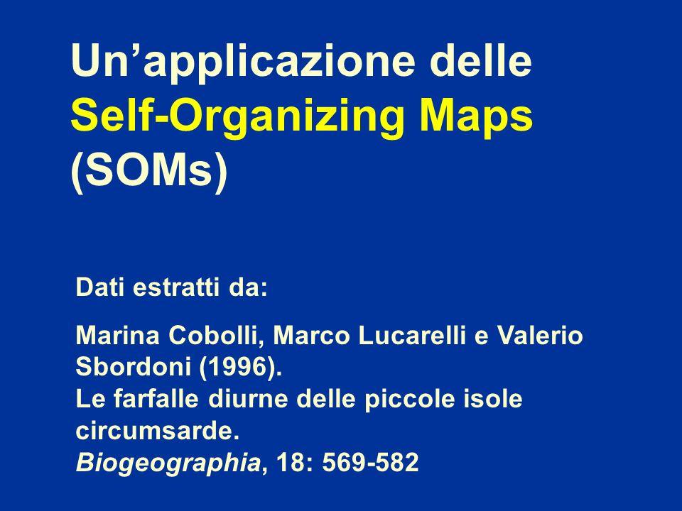 Un'applicazione delle Self-Organizing Maps (SOMs)