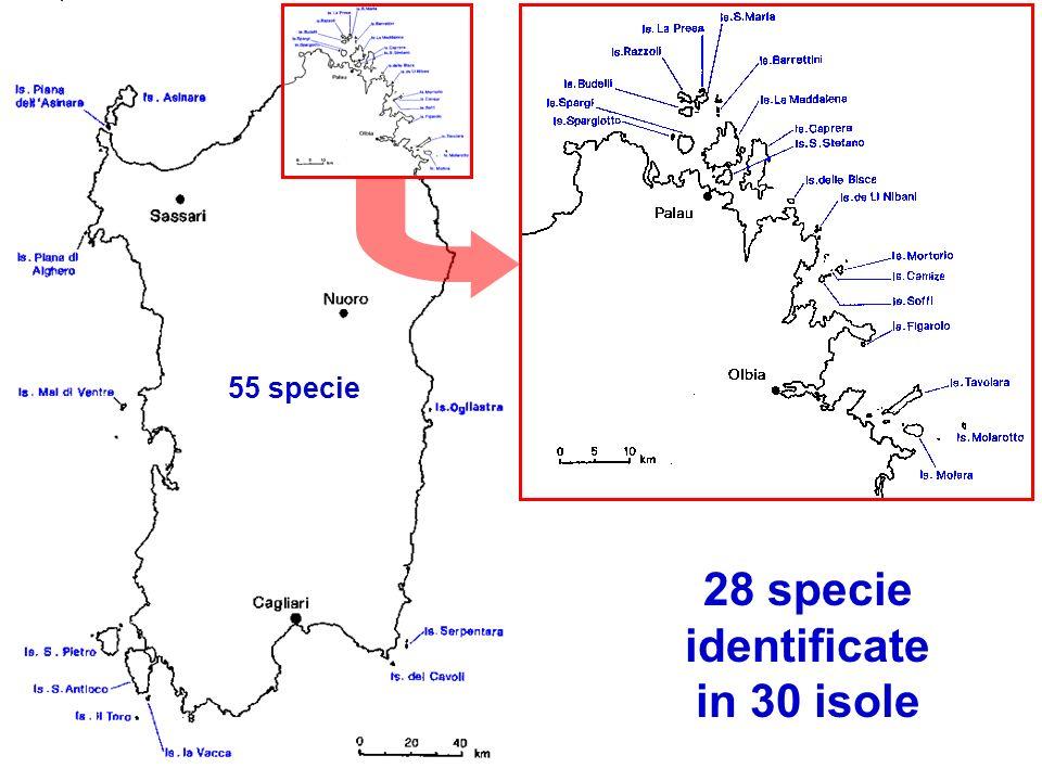 28 specie identificate in 30 isole