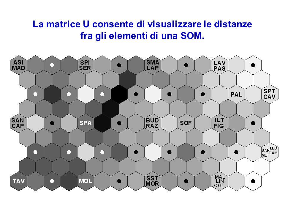 La matrice U consente di visualizzare le distanze fra gli elementi di una SOM.