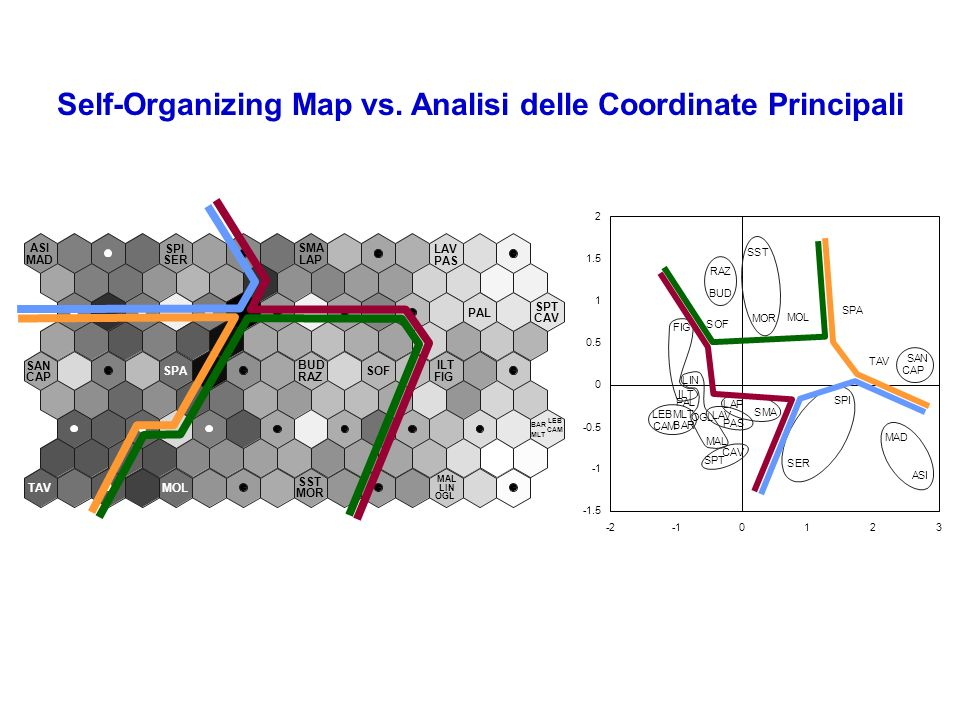 Self-Organizing Map vs. Analisi delle Coordinate Principali
