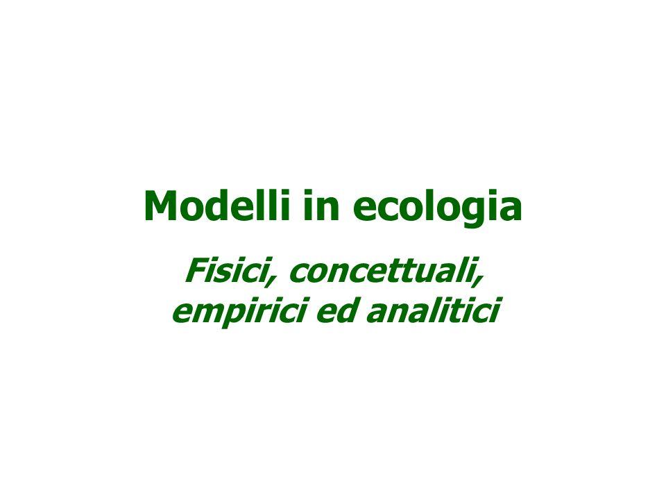 Fisici, concettuali, empirici ed analitici