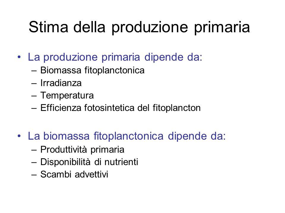 Stima della produzione primaria