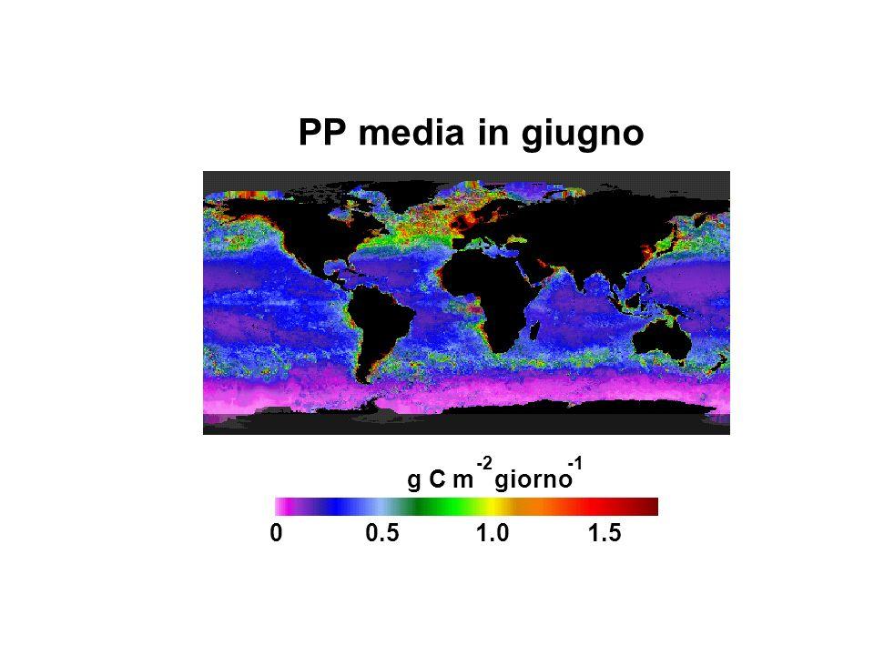 0.5 1.0 1.5 PP media in giugno g C m giorno -2 -1