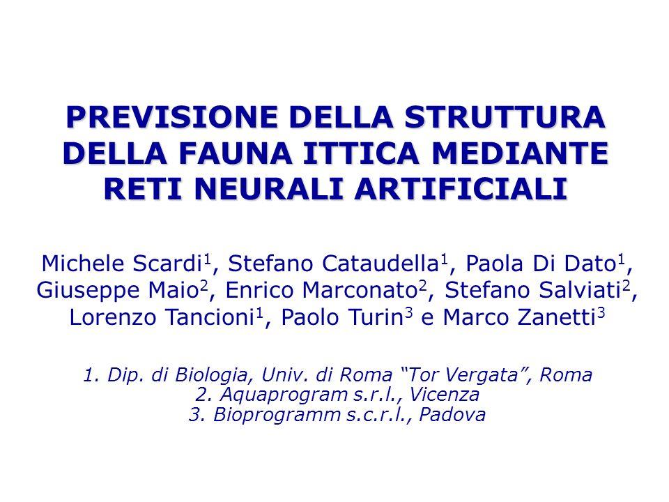 3. Bioprogramm s.c.r.l., Padova