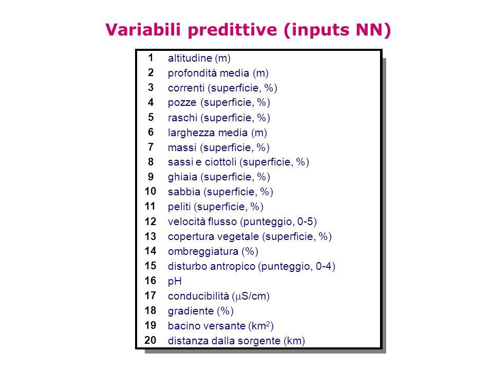 Variabili predittive (inputs NN)