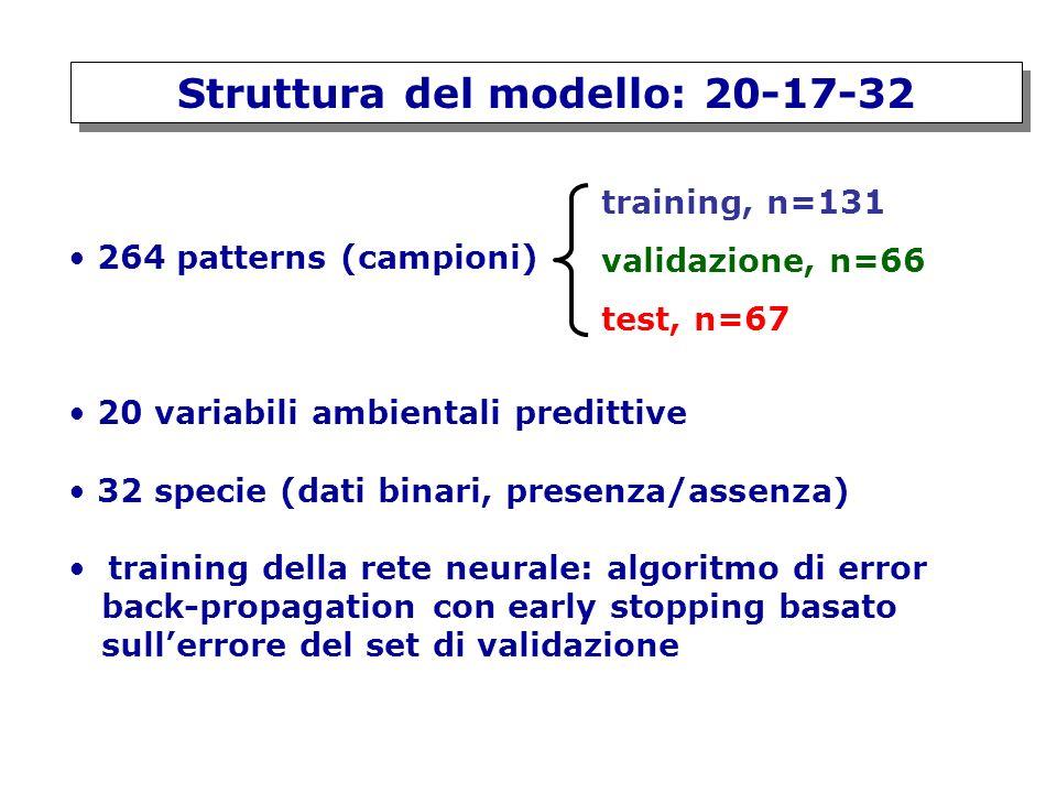 Struttura del modello: 20-17-32