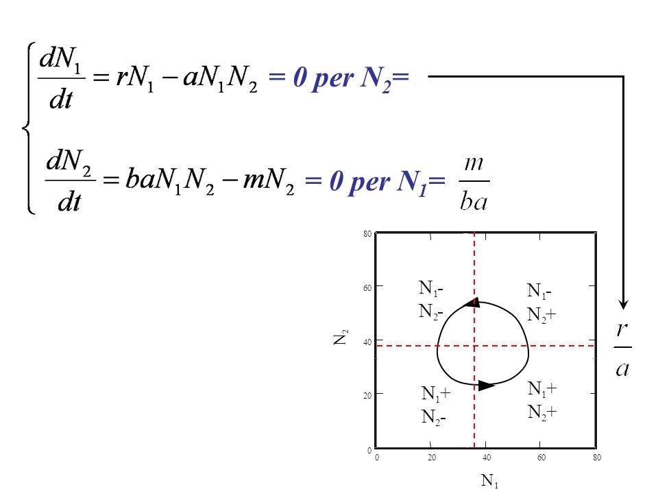 = 0 per N2= = 0 per N1= 2 4 6 8 N 1 N - 1 2 N +