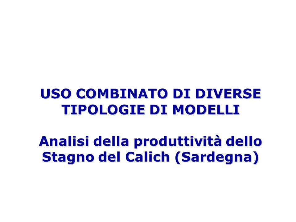 USO COMBINATO DI DIVERSE TIPOLOGIE DI MODELLI