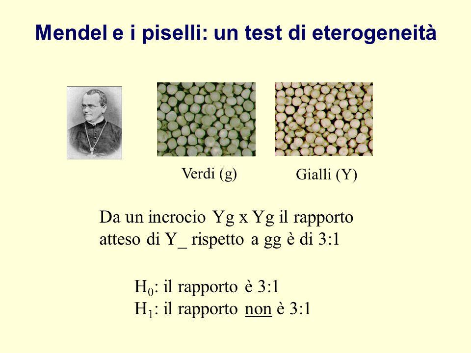 Mendel e i piselli: un test di eterogeneità