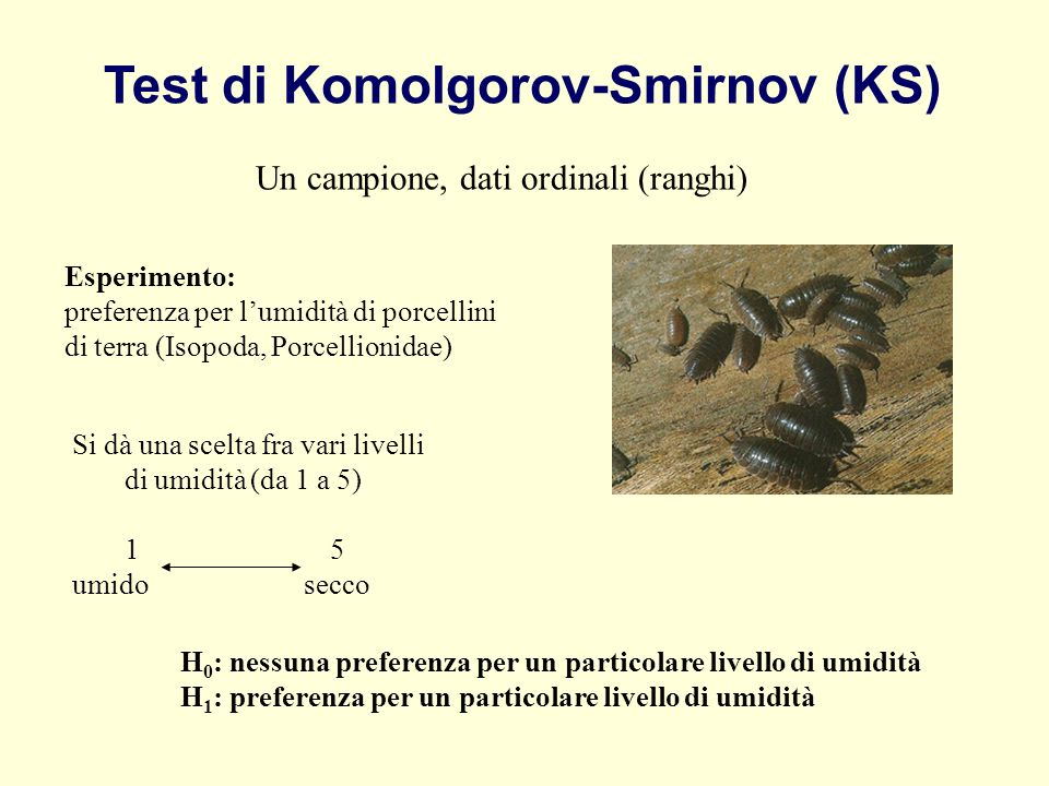 Test di Komolgorov-Smirnov (KS)