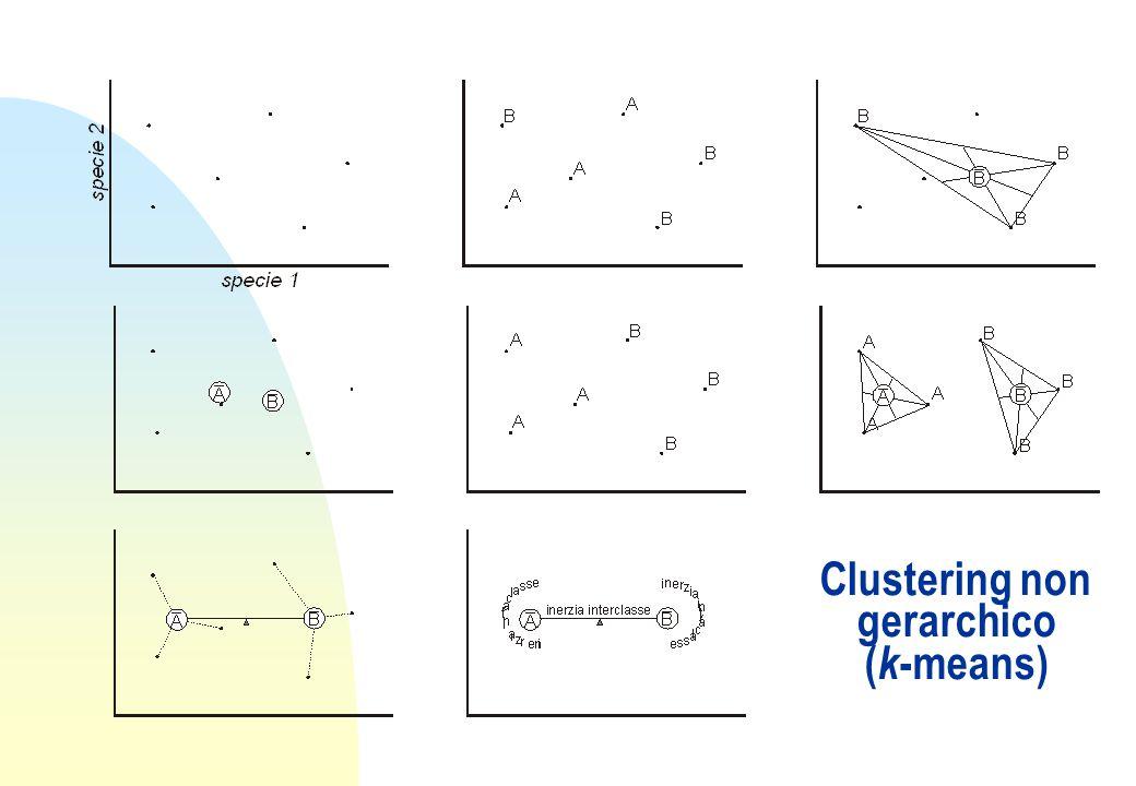 Clustering non gerarchico (k-means)