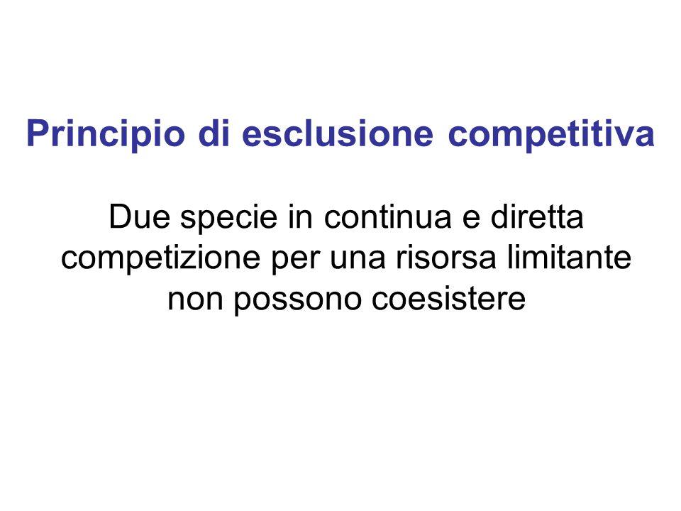 Principio di esclusione competitiva