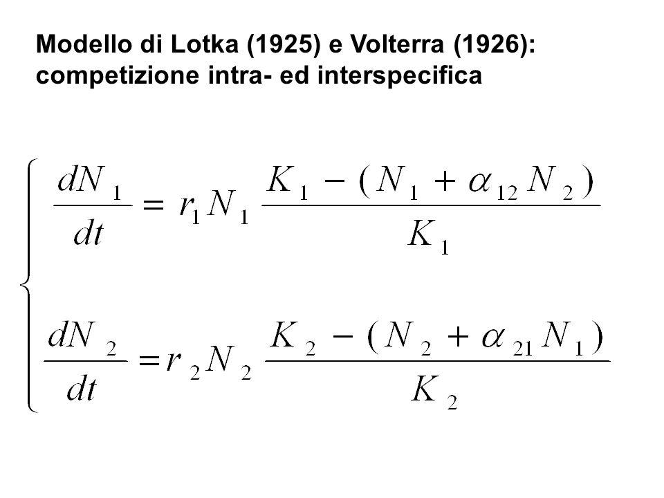 Modello di Lotka (1925) e Volterra (1926): competizione intra- ed interspecifica