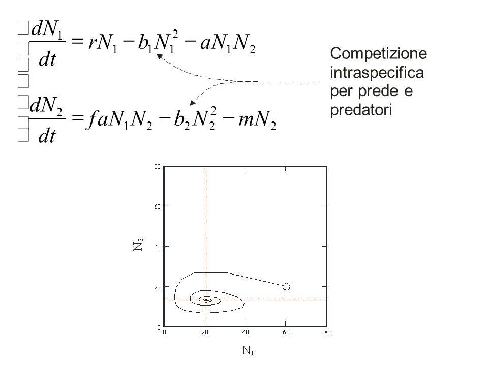 ï î í ì - = mN N b aN f dt dN r Competizione intraspecifica