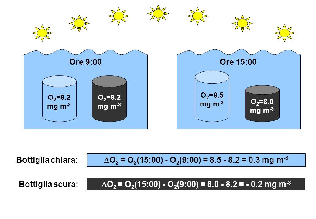 DO2 = O2(15:00) - O2(9:00) = 8.0 - 8.2 = - 0.2 mg m-3