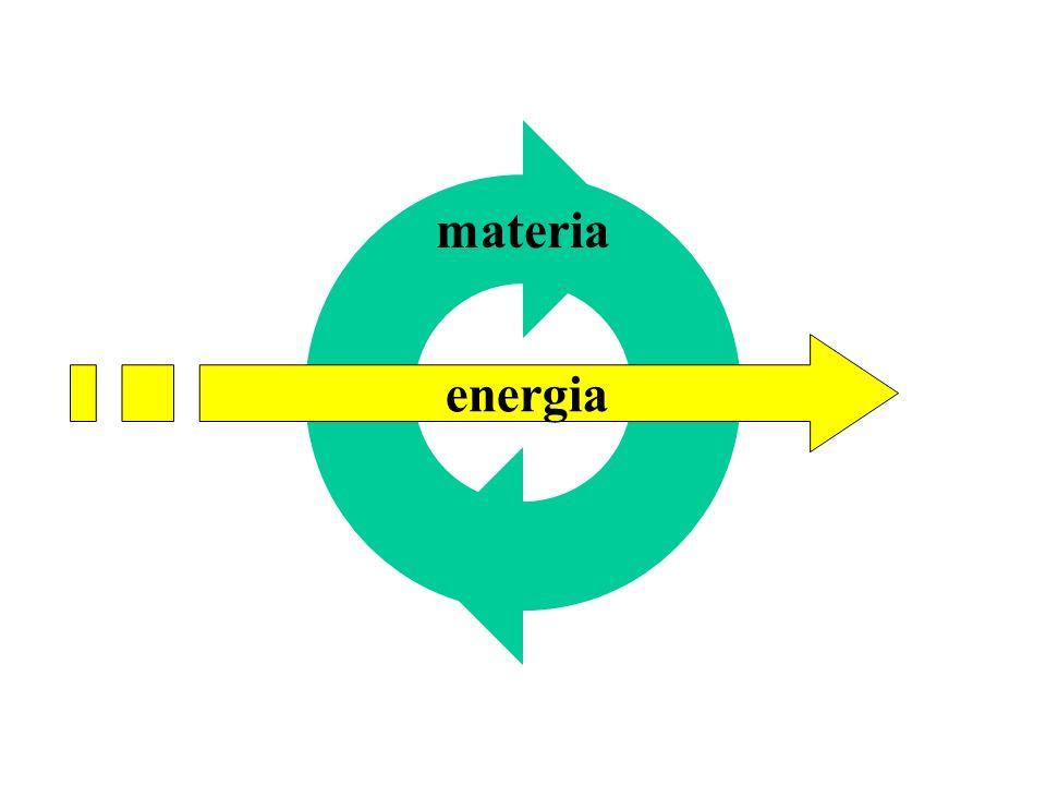 materia energia