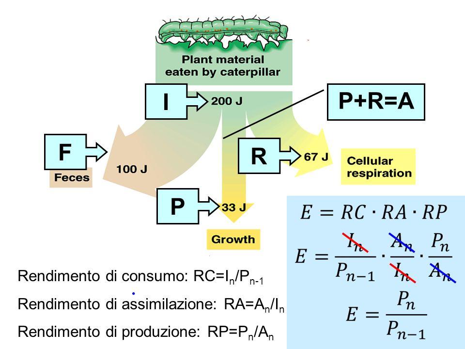 I P+R=A F R P Rendimento di consumo: RC=In/Pn-1
