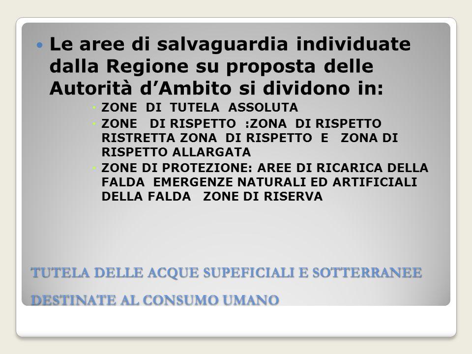Le aree di salvaguardia individuate dalla Regione su proposta delle Autorità d'Ambito si dividono in: