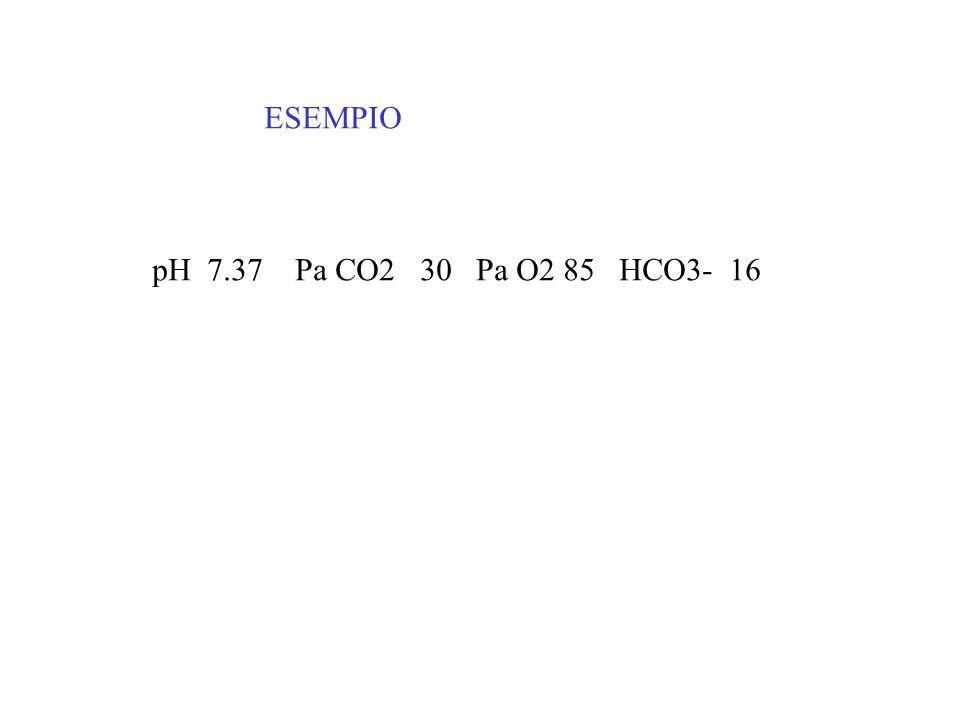 ESEMPIO pH 7.37 Pa CO2 30 Pa O2 85 HCO3- 16