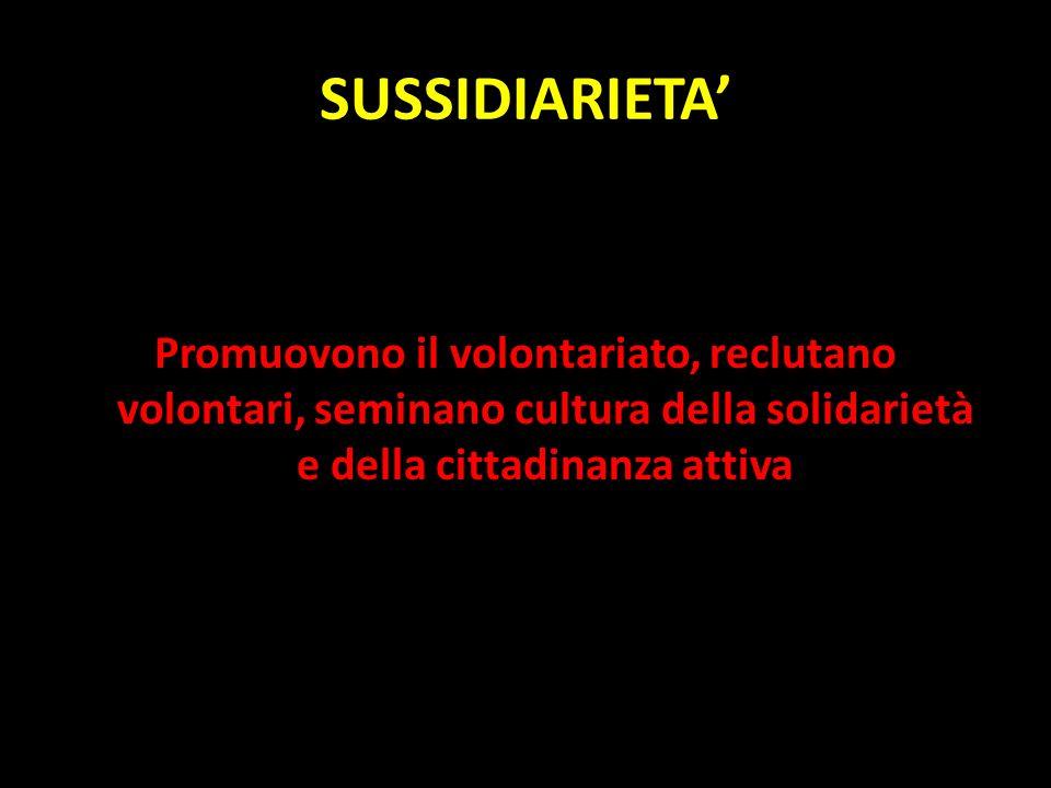 SUSSIDIARIETA' Promuovono il volontariato, reclutano volontari, seminano cultura della solidarietà e della cittadinanza attiva.
