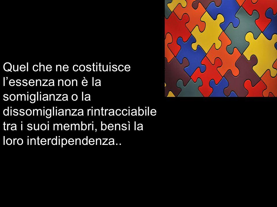 Quel che ne costituisce l'essenza non è la somiglianza o la dissomiglianza rintracciabile tra i suoi membri, bensì la loro interdipendenza..