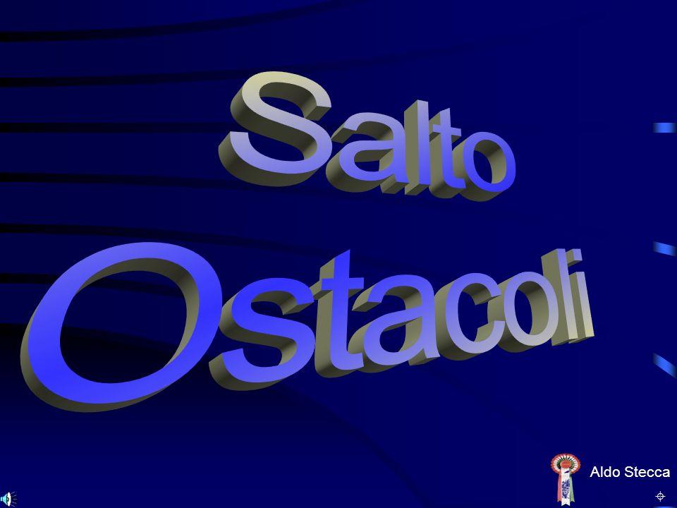 Salto Ostacoli Aldo Stecca ±