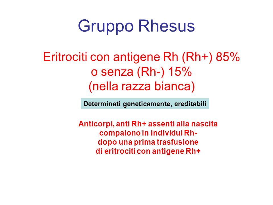 Gruppo Rhesus Eritrociti con antigene Rh (Rh+) 85% o senza (Rh-) 15% (nella razza bianca) Determinati geneticamente, ereditabili.