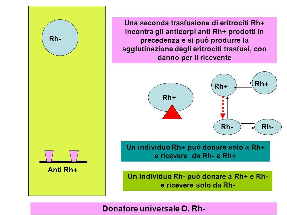 Donatore universale O, Rh-