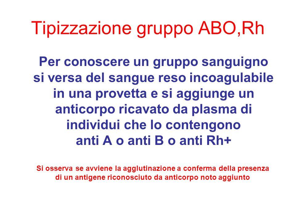 Tipizzazione gruppo ABO,Rh
