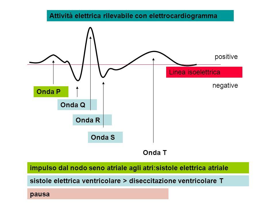 Attività elettrica rilevabile con elettrocardiogramma