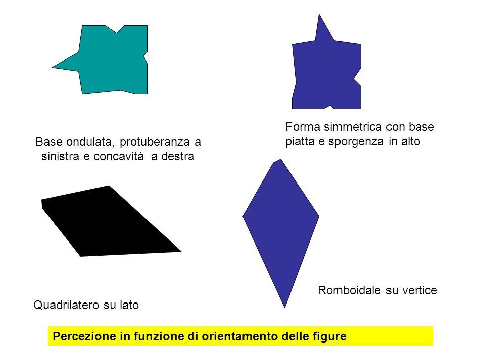Base ondulata, protuberanza a sinistra e concavità a destra