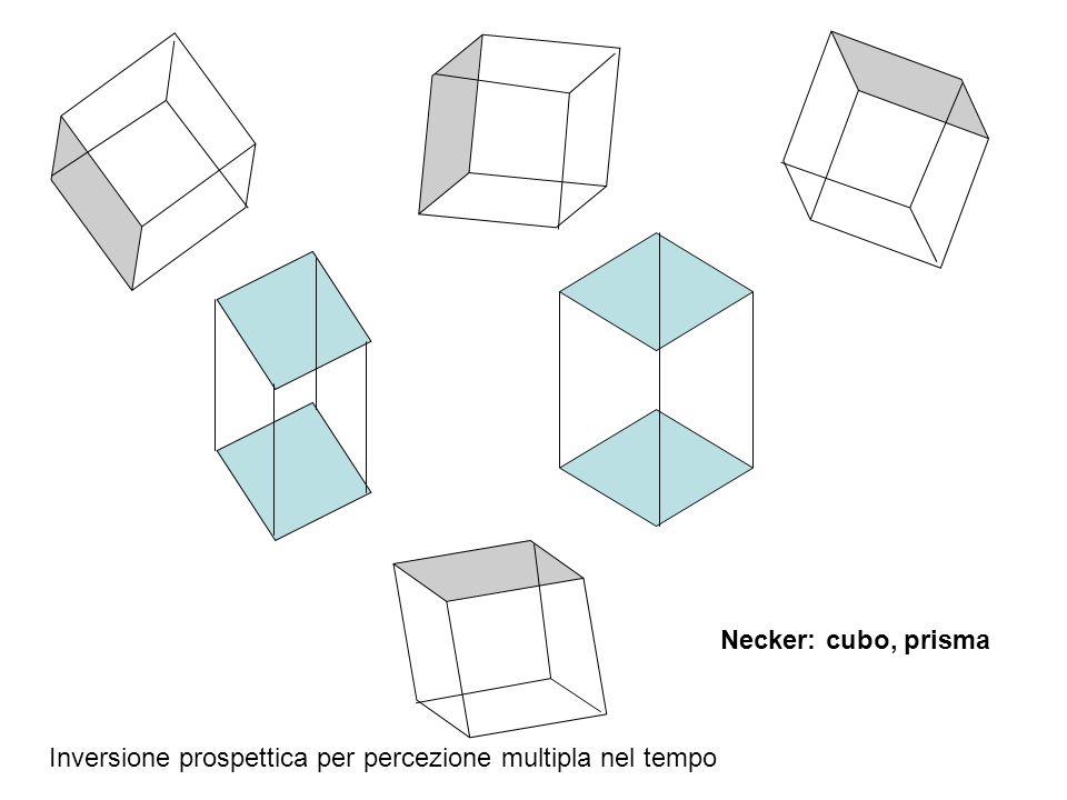 Necker: cubo, prisma Inversione prospettica per percezione multipla nel tempo