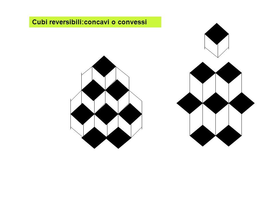 Cubi reversibili:concavi o convessi