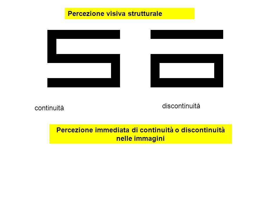 Percezione immediata di continuità o discontinuità nelle immagini