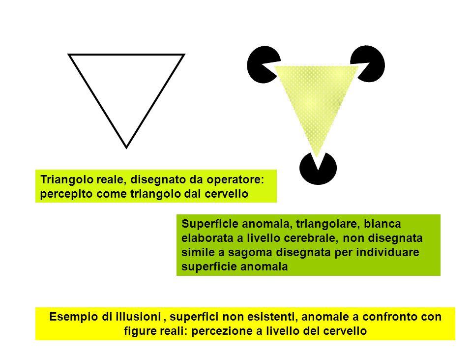 Triangolo reale, disegnato da operatore: percepito come triangolo dal cervello