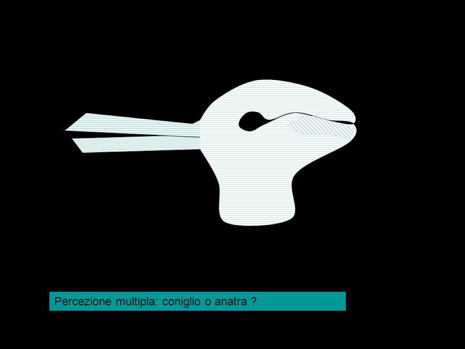 Percezione multipla: coniglio o anatra
