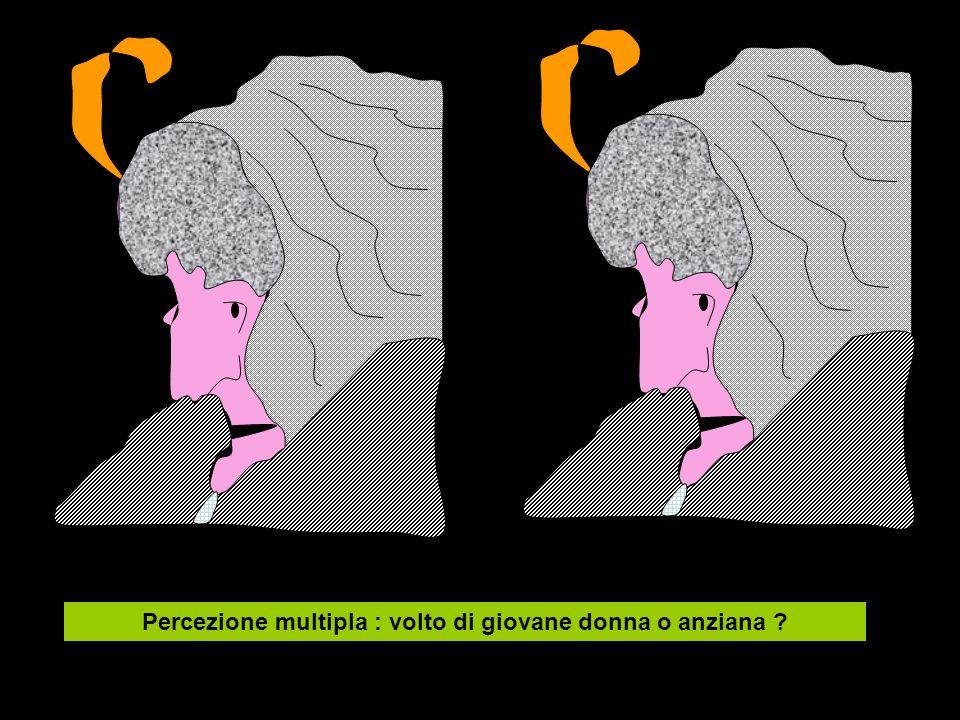 Percezione multipla : volto di giovane donna o anziana