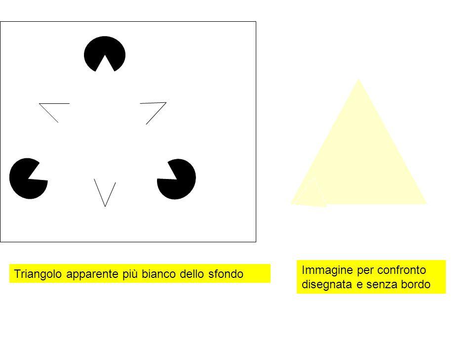 Immagine per confronto disegnata e senza bordo