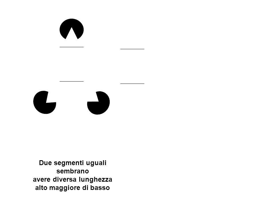 Due segmenti uguali sembrano avere diversa lunghezza alto maggiore di basso