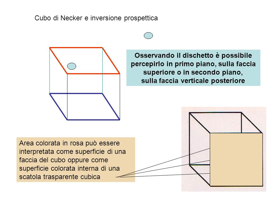 Cubo di Necker e inversione prospettica