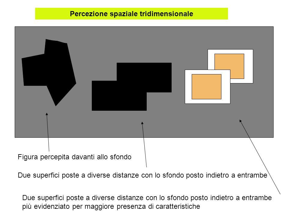 Percezione spaziale tridimensionale