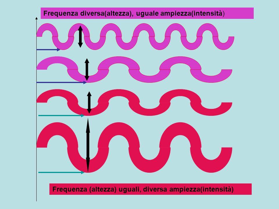 Frequenza diversa(altezza), uguale ampiezza(intensità)