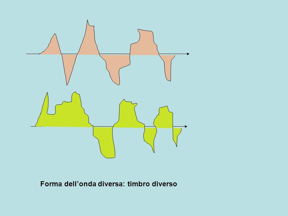 Forma dell'onda diversa: timbro diverso